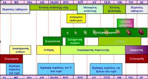 eleokarpos-map